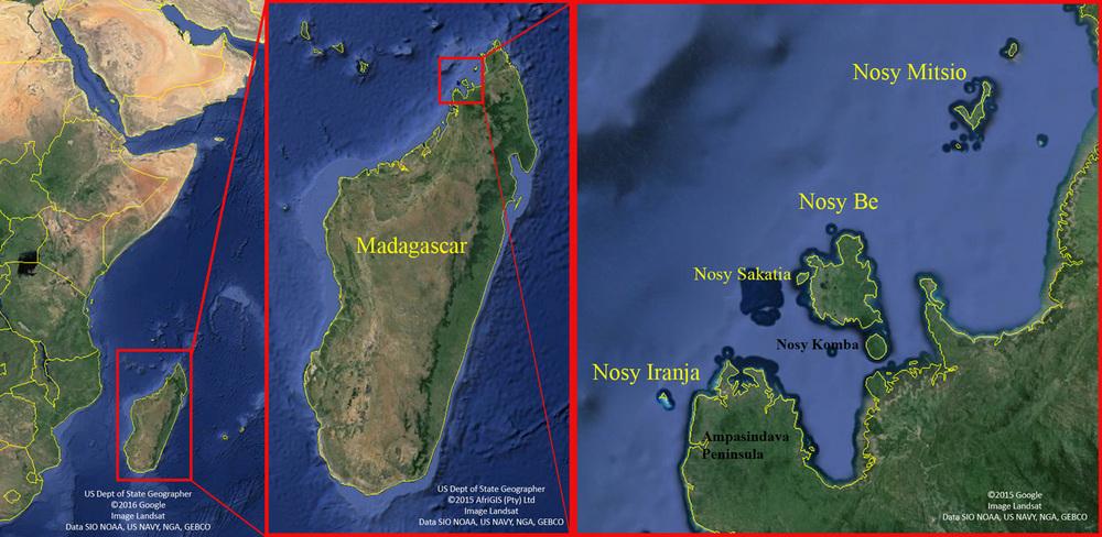 Madagascar wNW detail GE 3.7B.1500px.jpg