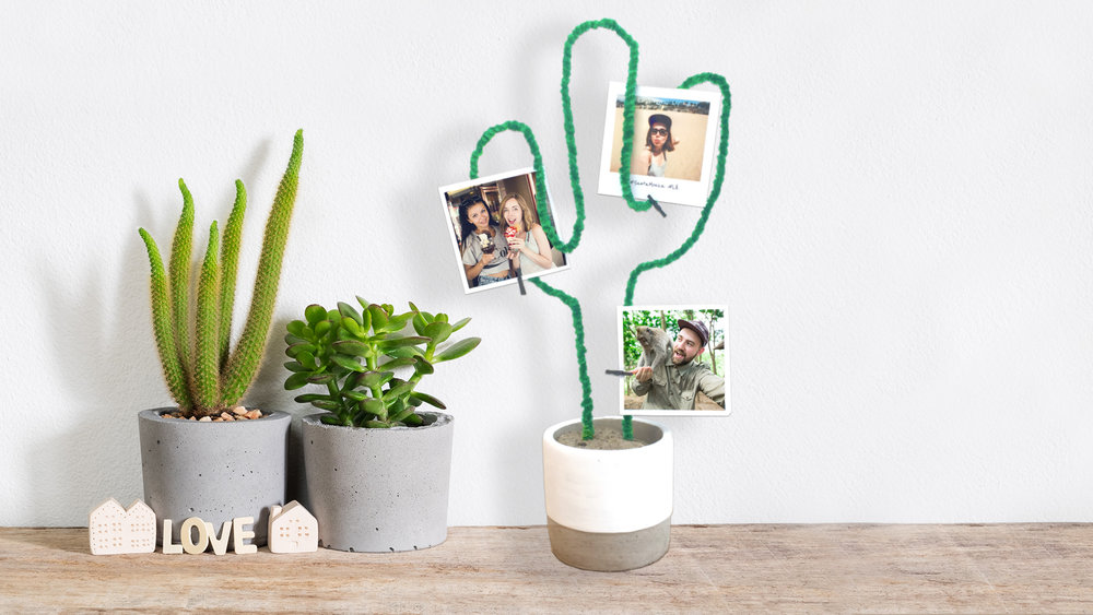 DIY Cactus Photo Stand | Printiki