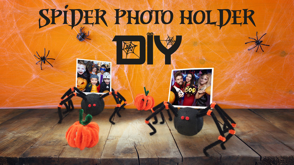 spider-thumbnail.jpg