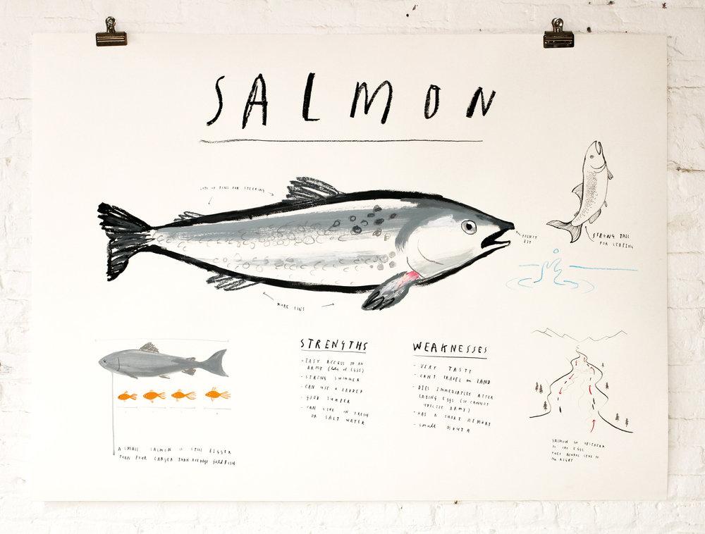 SALMON- web.jpg