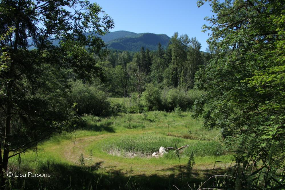Habitat Restoration at Kanaskat Reach