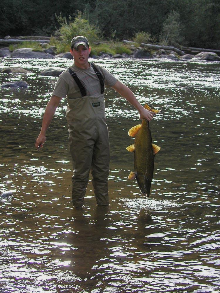 Fisherman at Icy Creek