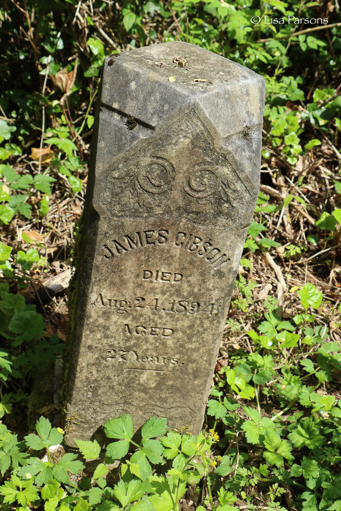 Grave Stone in the Forest