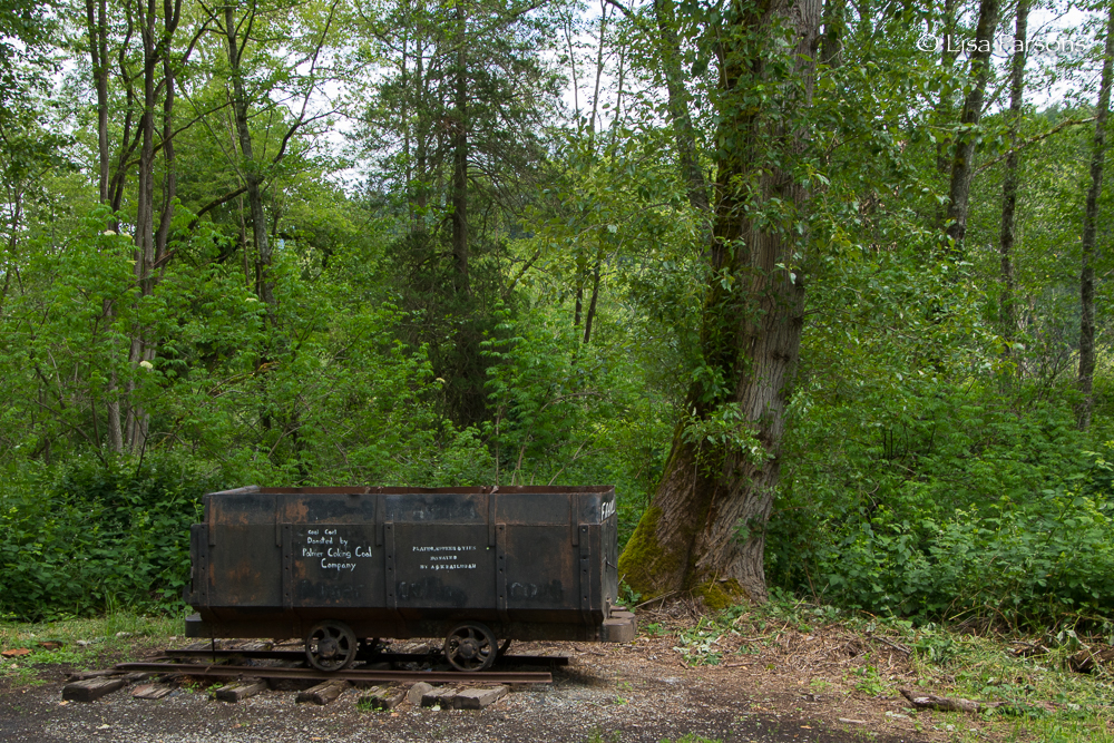 Coal Car at Trail Junction