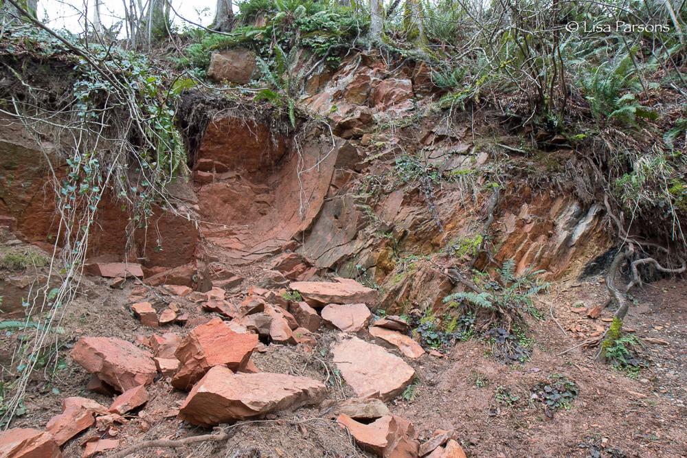 Wall of Sedimentary Stone