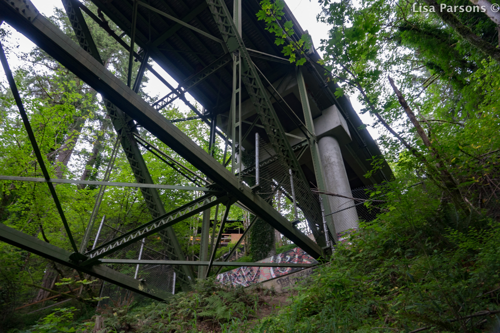 Looking Up From Trail Under Bridge