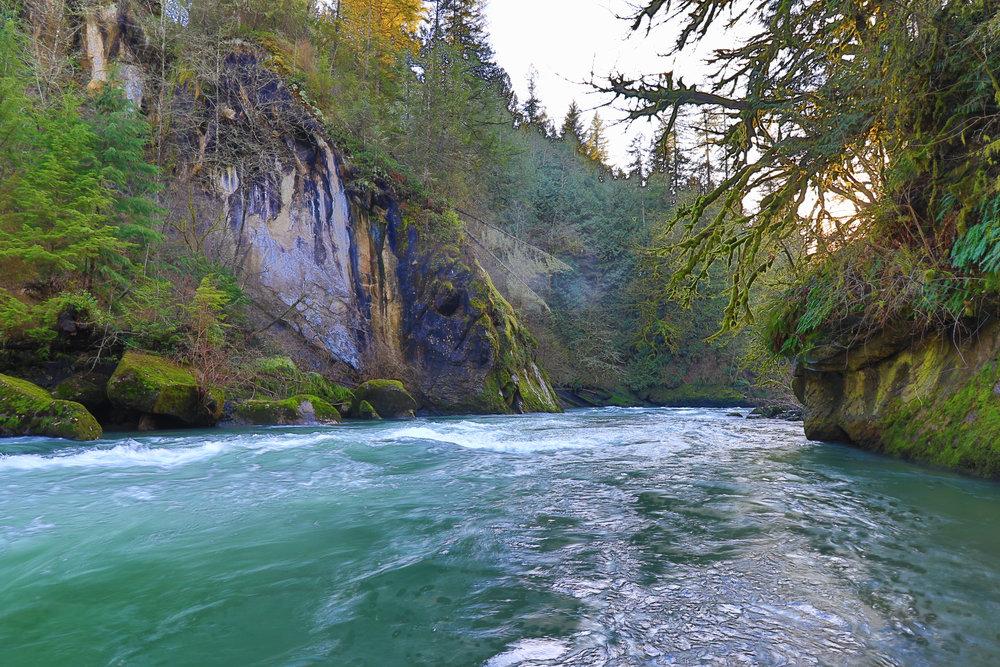 Wild Winter River