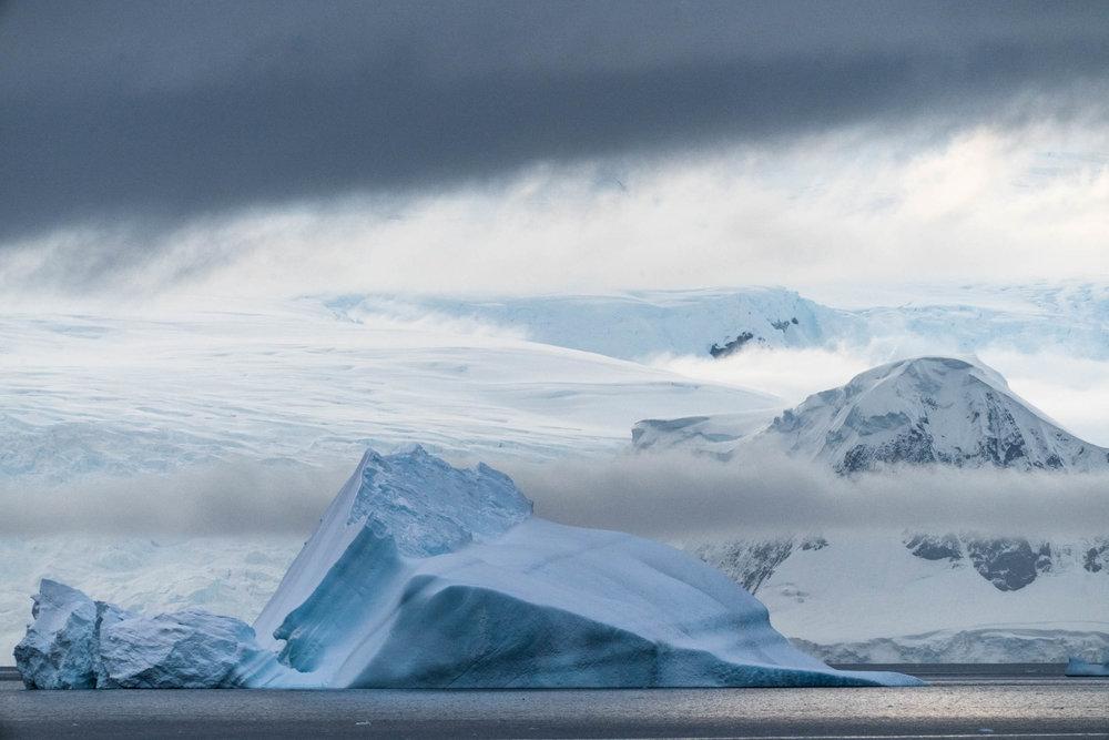 Antarctica Copyright Fraser Morton_DSC8456.jpg