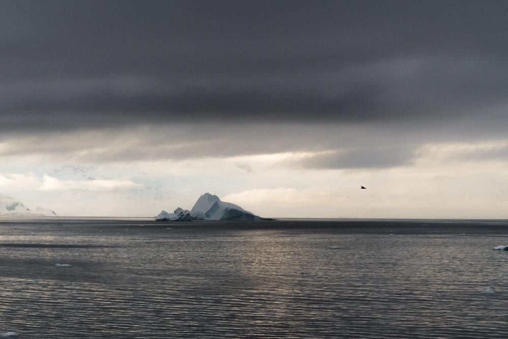 Antarctica Copyright Fraser Morton.jpg