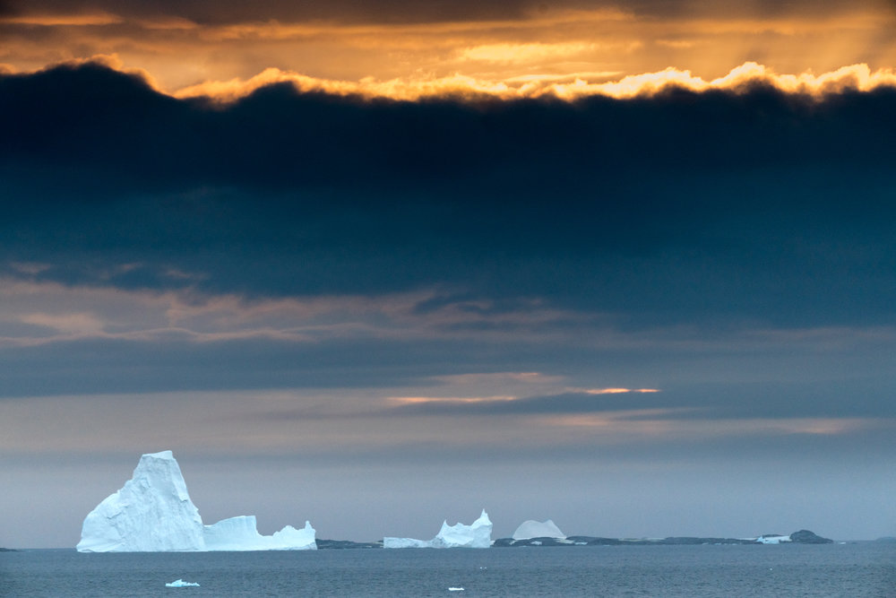 Copy of Antarctica Copyright Fraser Morton