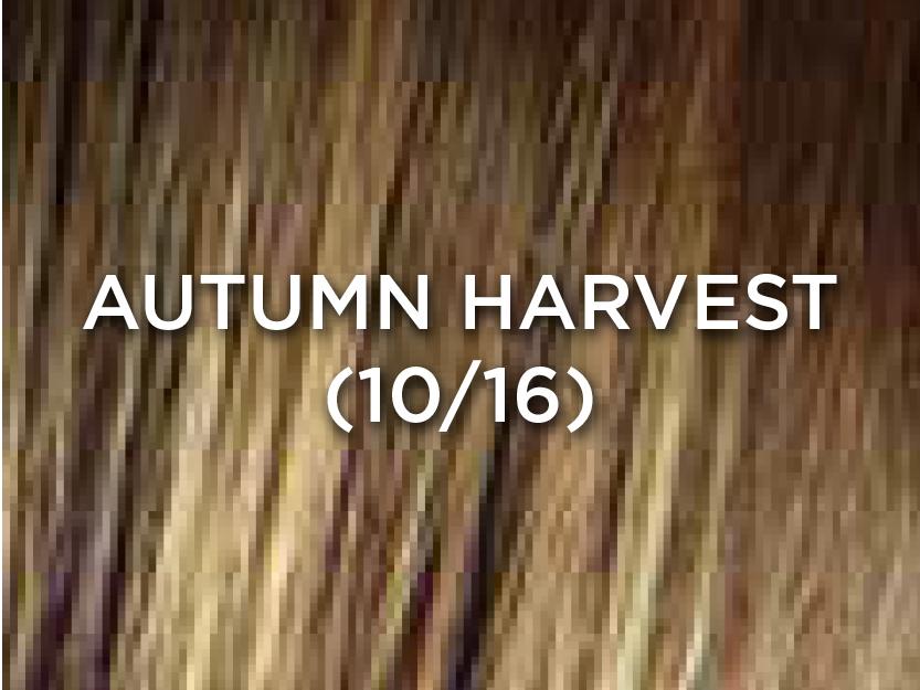 AutumnHarvest.jpg