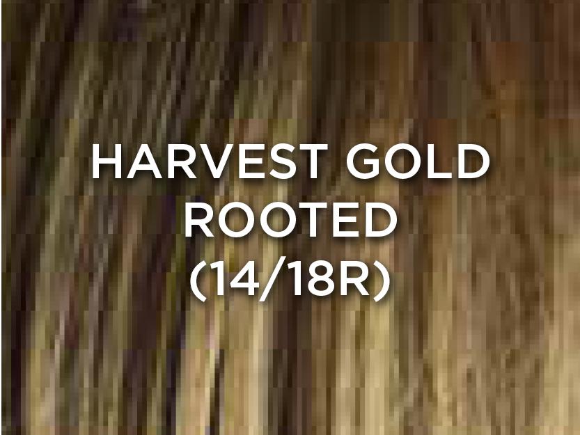 HarvestGoldRooted.jpg