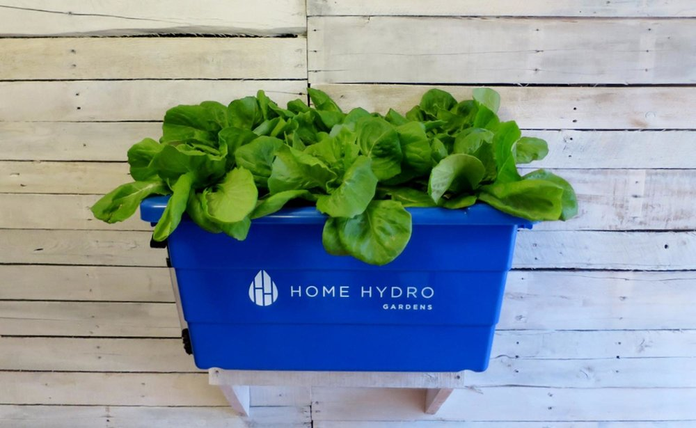 Indoor Hydroponic Growing Systems Home Hydro Gardens
