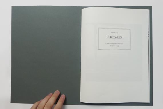 vbax_book_02.jpg