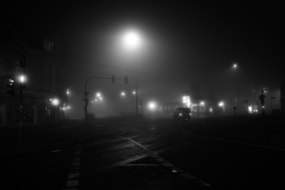11_naked_city_fog_small.jpg