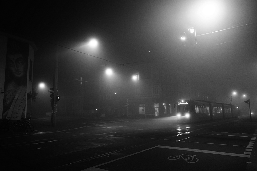 18_naked_city_fog_small.jpg