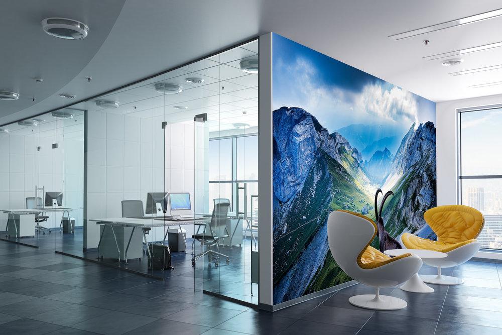 Akustikbild als vollflächige Wandverkleidung im Büro