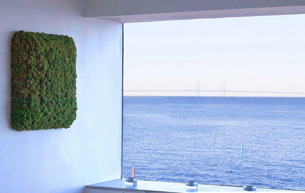 Norgröna Schallabsorber aus Rentiermoos - 100% Natürlich und echt