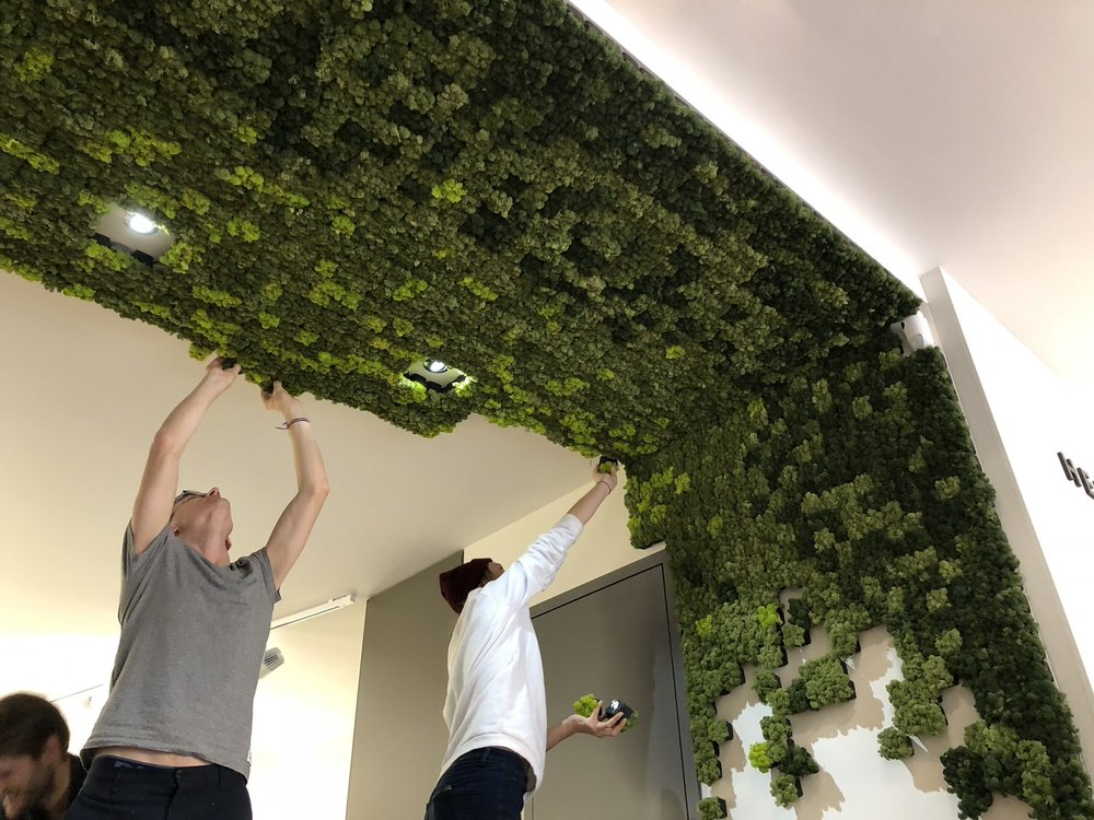 Nordgröna Pixel, 100% natürlicher Schallabsorber bei Heidi's Garden AG