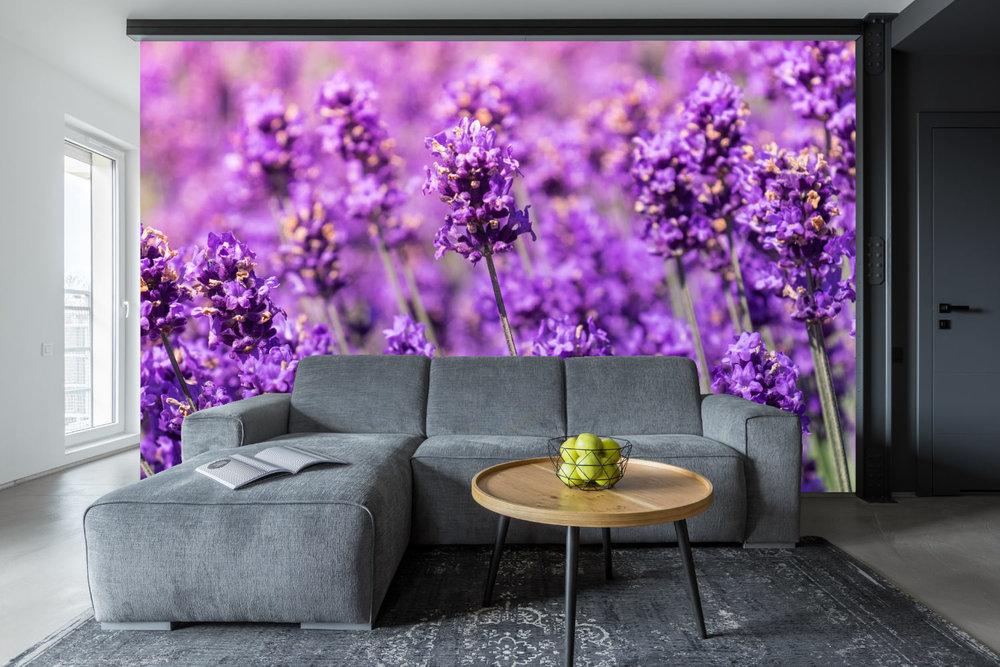 xxl bilder fr wohnzimmer akustikbild xxl wohnzimmer with. Black Bedroom Furniture Sets. Home Design Ideas