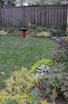 organic-lawn-care-service-minneapolis.jpg