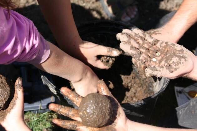 seed_planting_minnesota.jpg