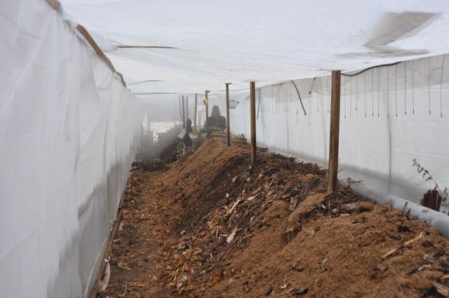 composting_operation.jpg
