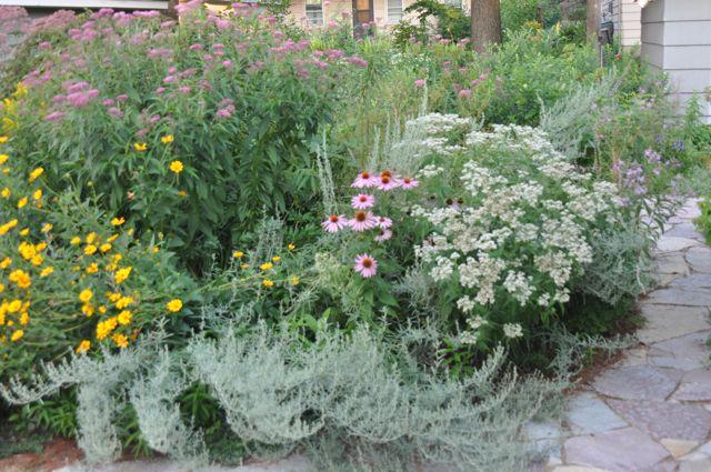 garden installation & maintenance