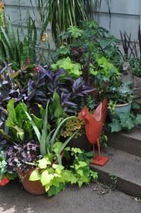 Organic_Home_Gardens-199x300.jpg