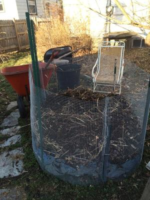 Compost6.jpg