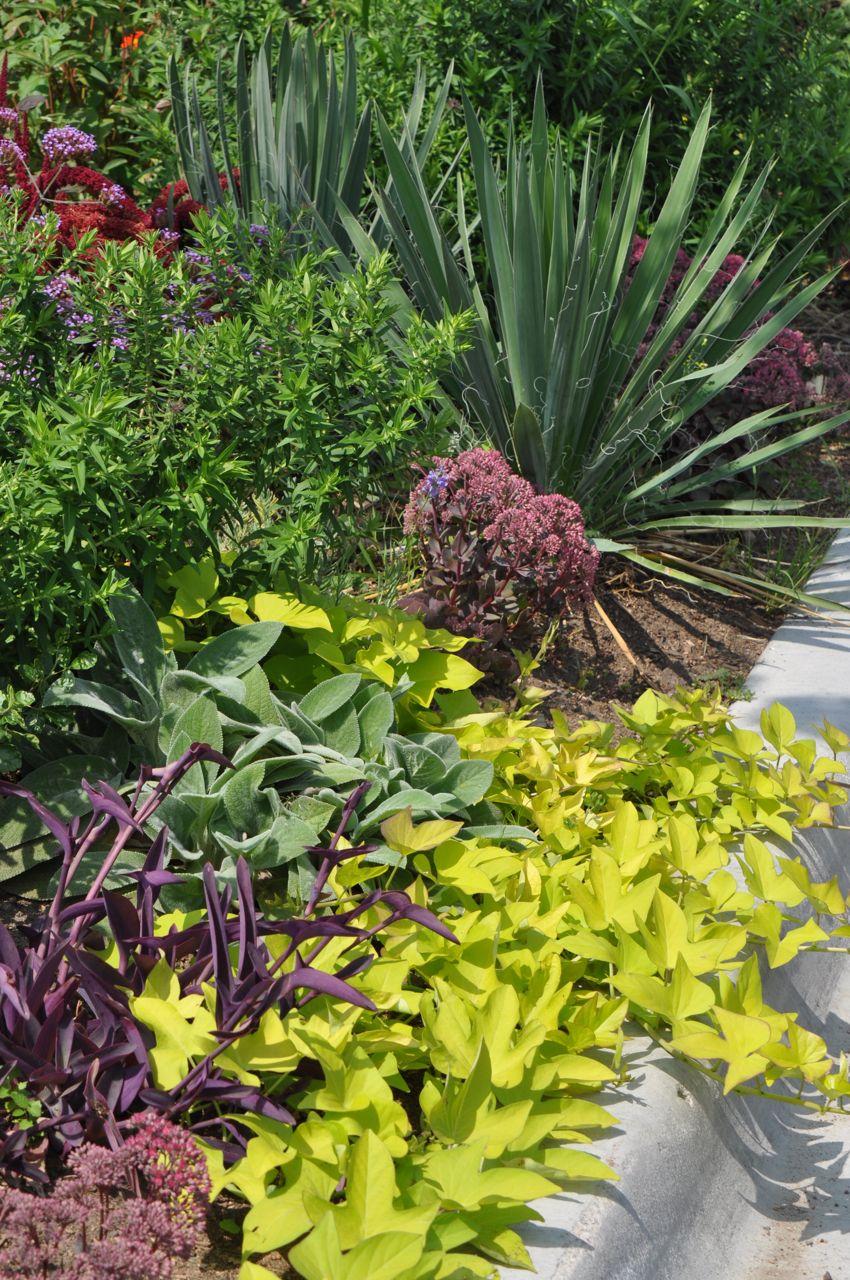 perennial_garden_installation.jpg