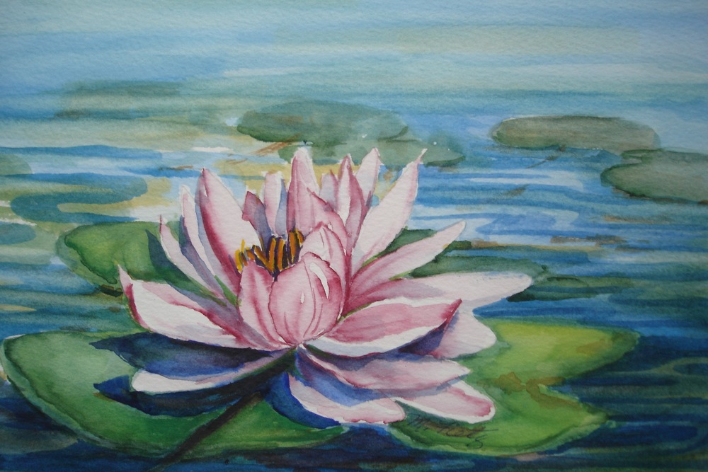 One Waterlily