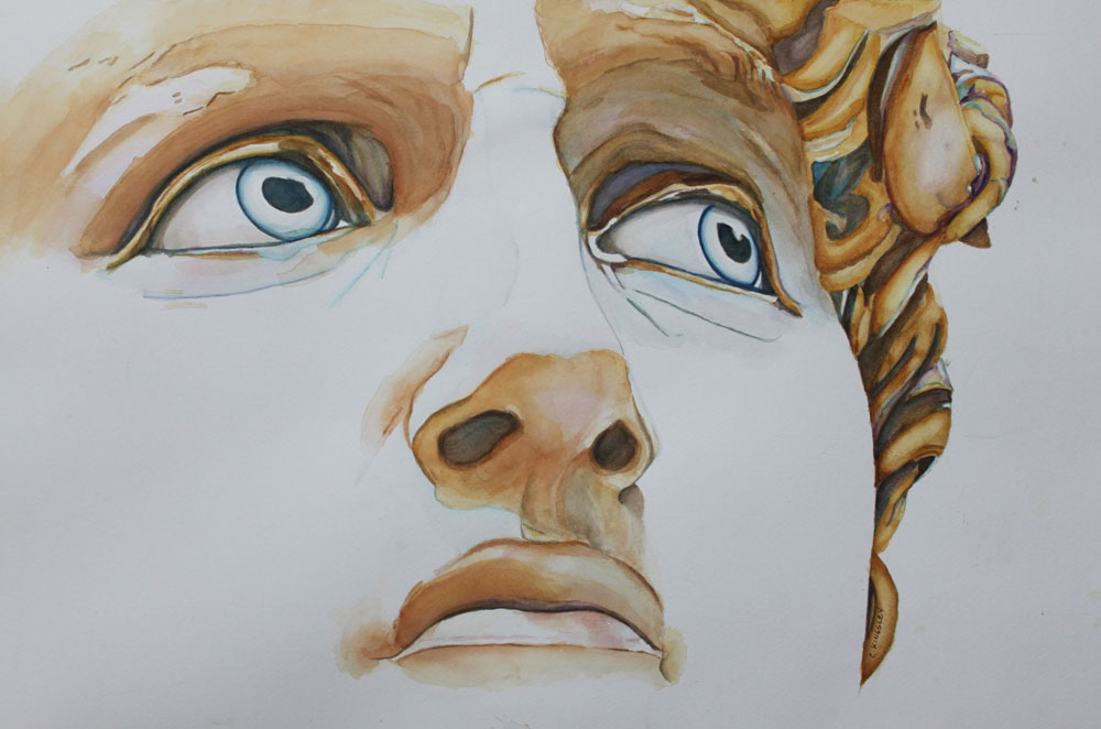 Michelangelo's David: Those Eyes
