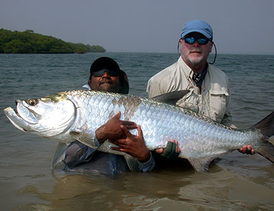 Belize tarpon caught while fly fishing for tarpon in Belize
