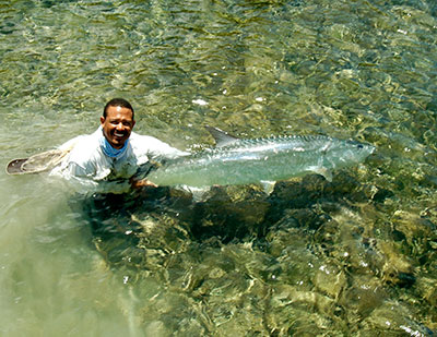 Belize tarpon released