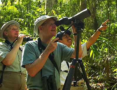 Bird watching at Chan Chich Belize