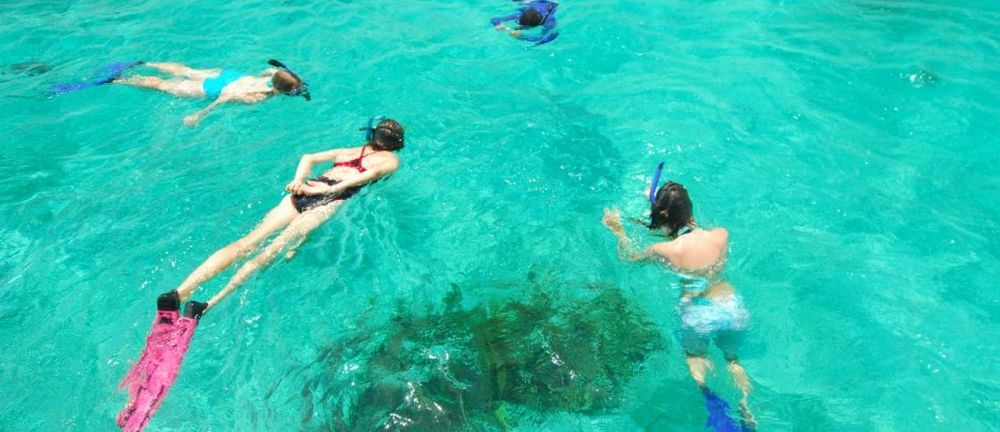 Snorkeling Hm-LR1120R.jpg