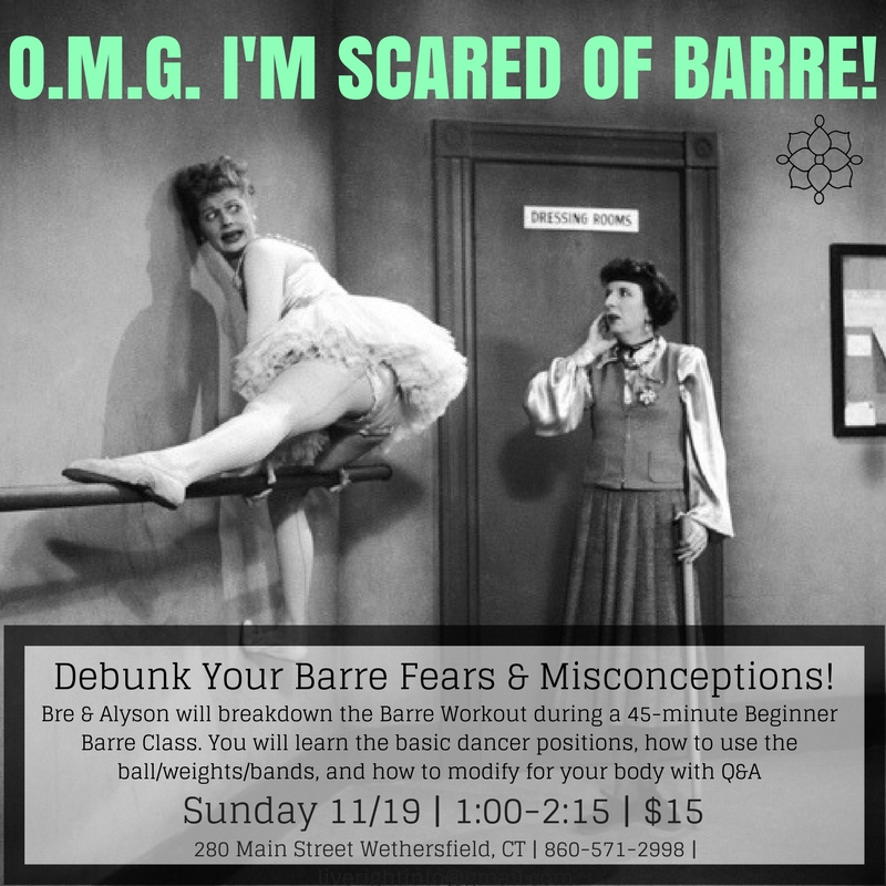 O.M.G. I'm Scared of Barre!.jpg