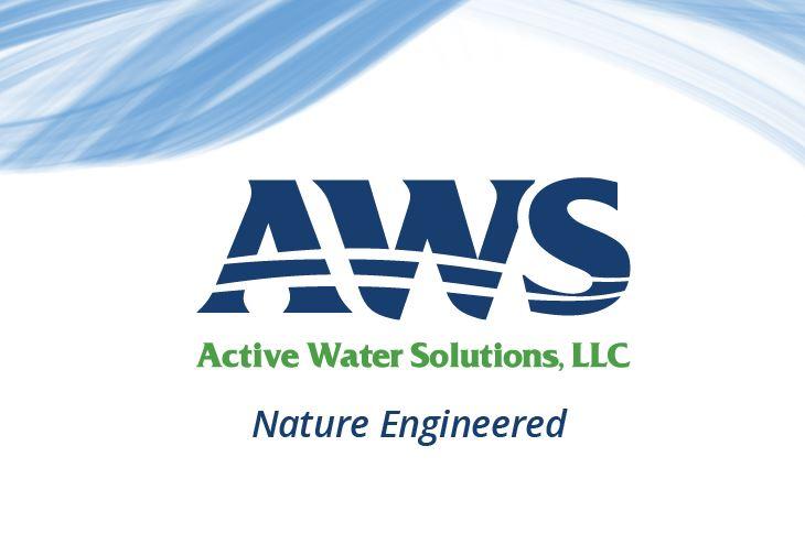 AWS company profile image.JPG