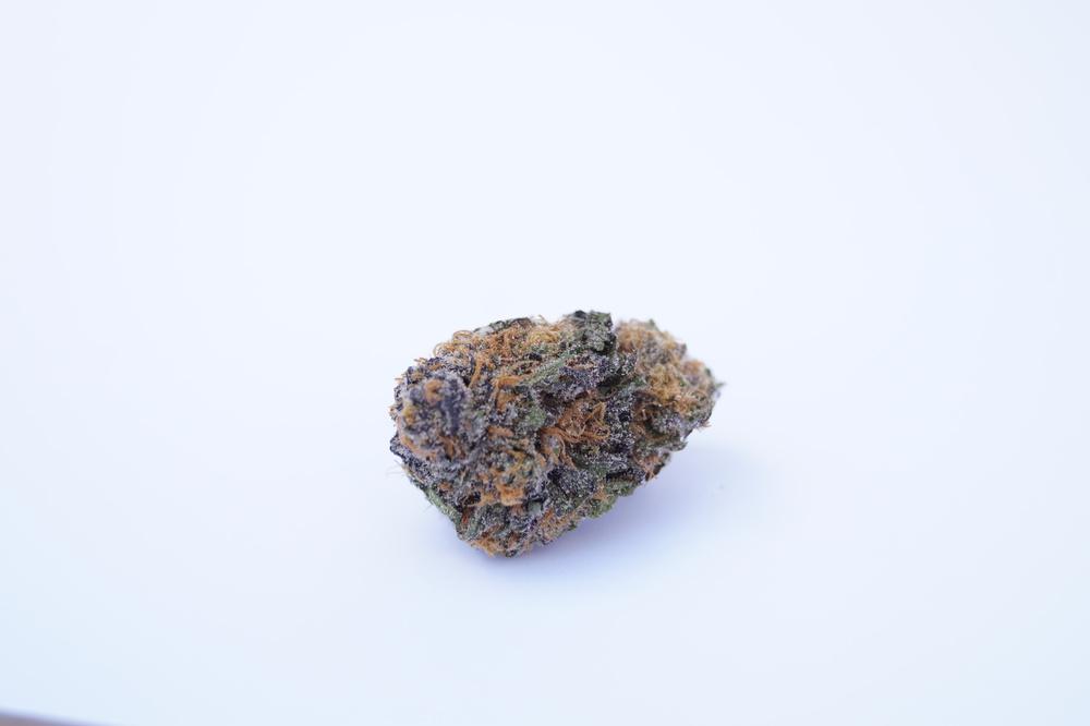 Dense purple Cannabis nug on white background Purple Kush Strin