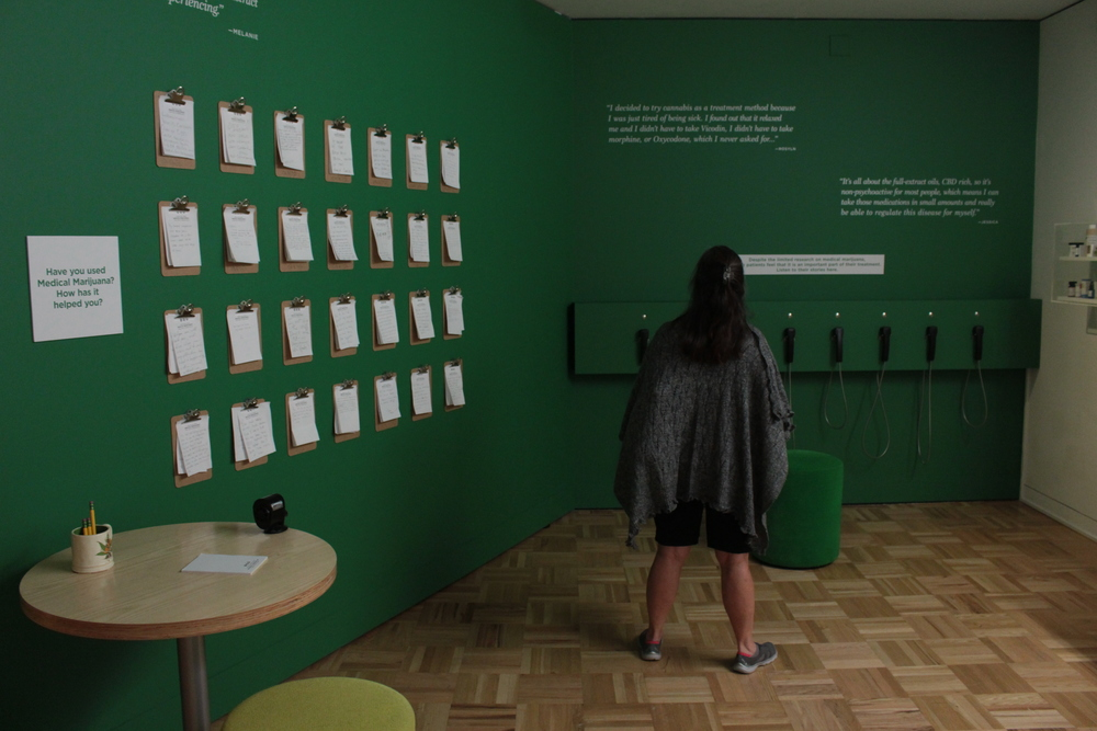 Woman exmines medical cannabis exhibit at oakland museum of california.JPG