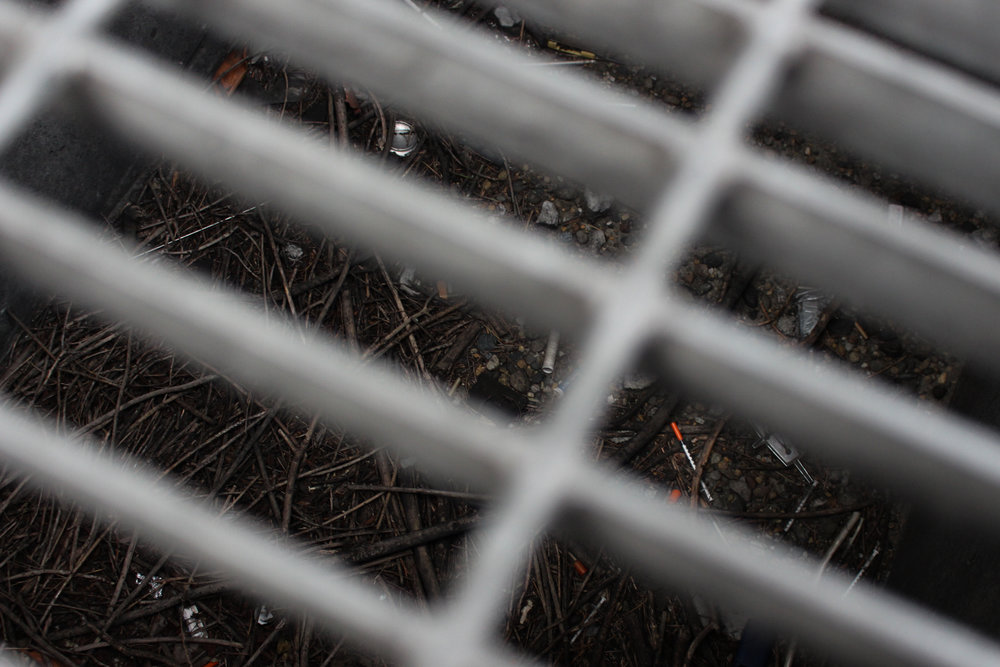 Used heroin needle beneath storm drain in seattle