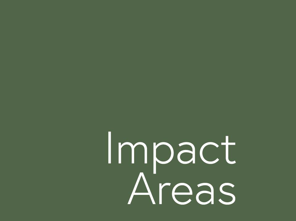 Impact Areas.jpg