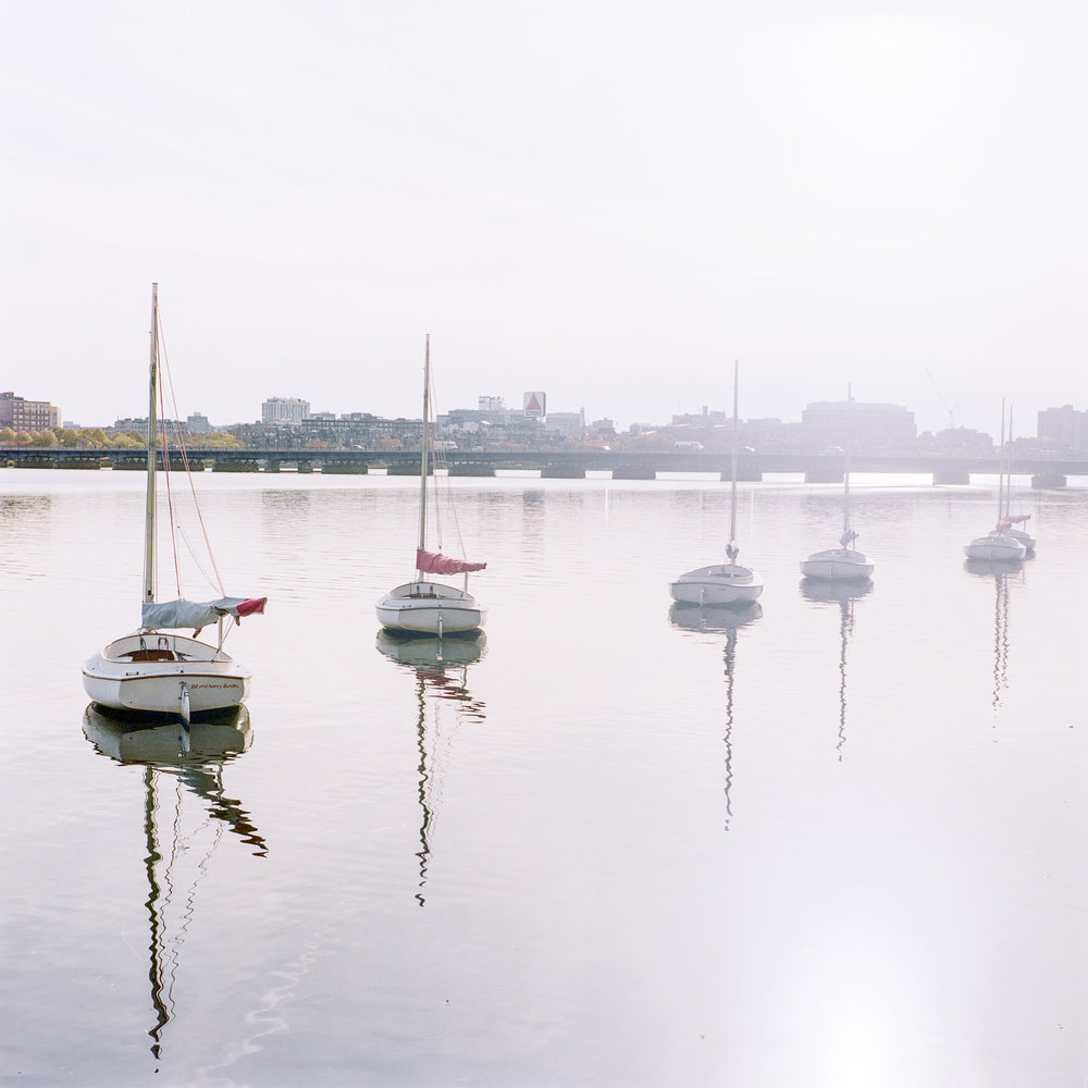 Hasselblad 500cm | Zeiss 80 f/2.8 Planar | Kodak Portra 160