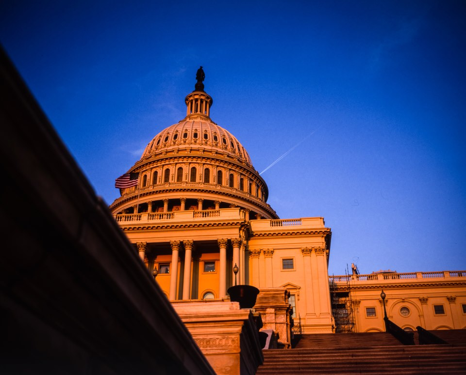 Washington D.C., April 2014 | Mamiya 7 | 80 f/4 | Fujichrome Velvia 50
