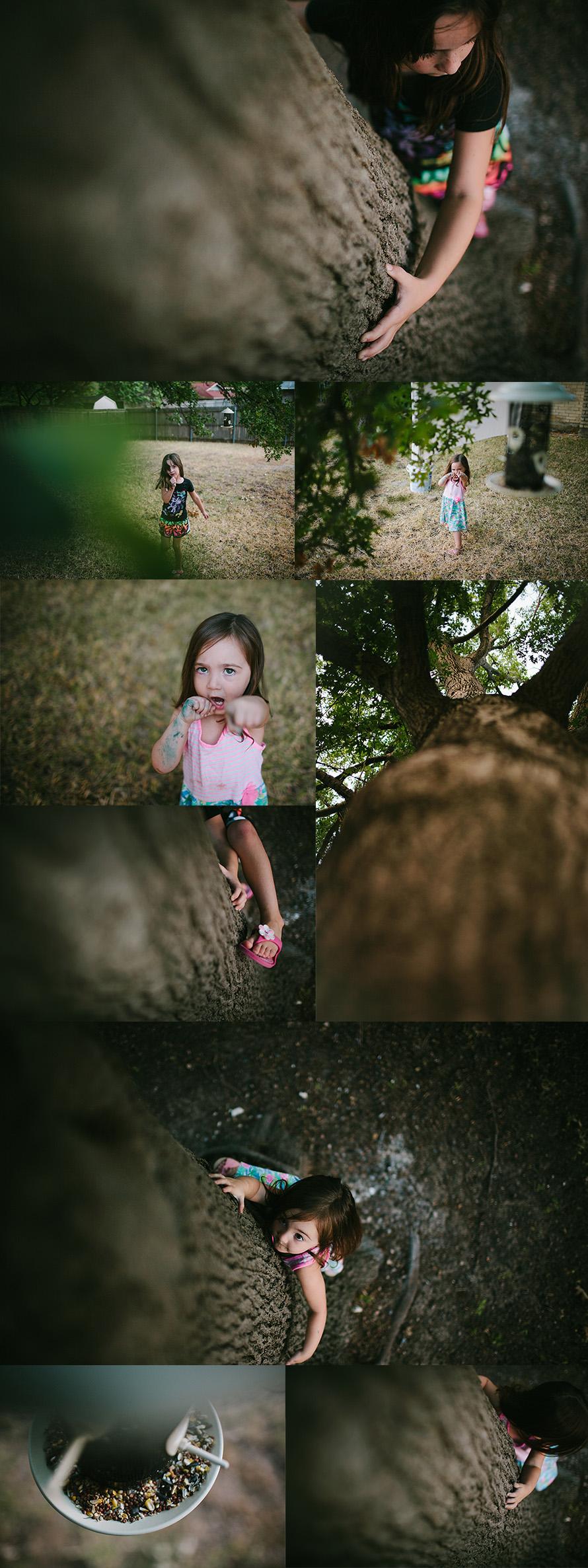 planofamilyphotographers