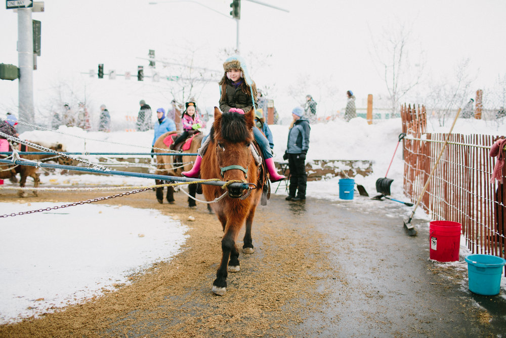 Anchorage, Alaska Pony Rides at the Fur Rendezvous