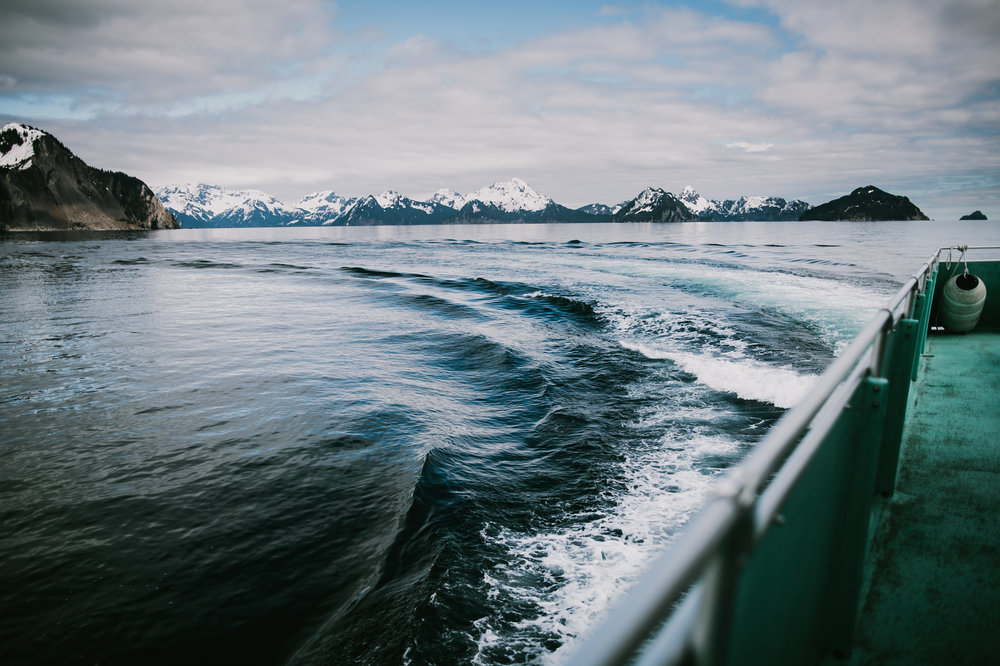 kenaifjords-1-4.jpg