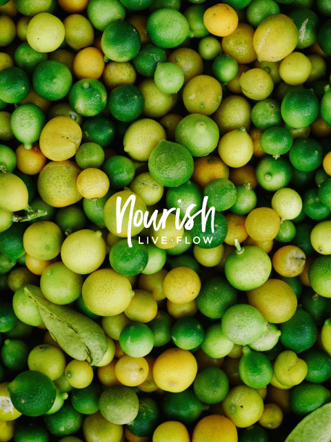 Nourish Live Flow Logo | Trout + Taylor www.troutandtaylor.com