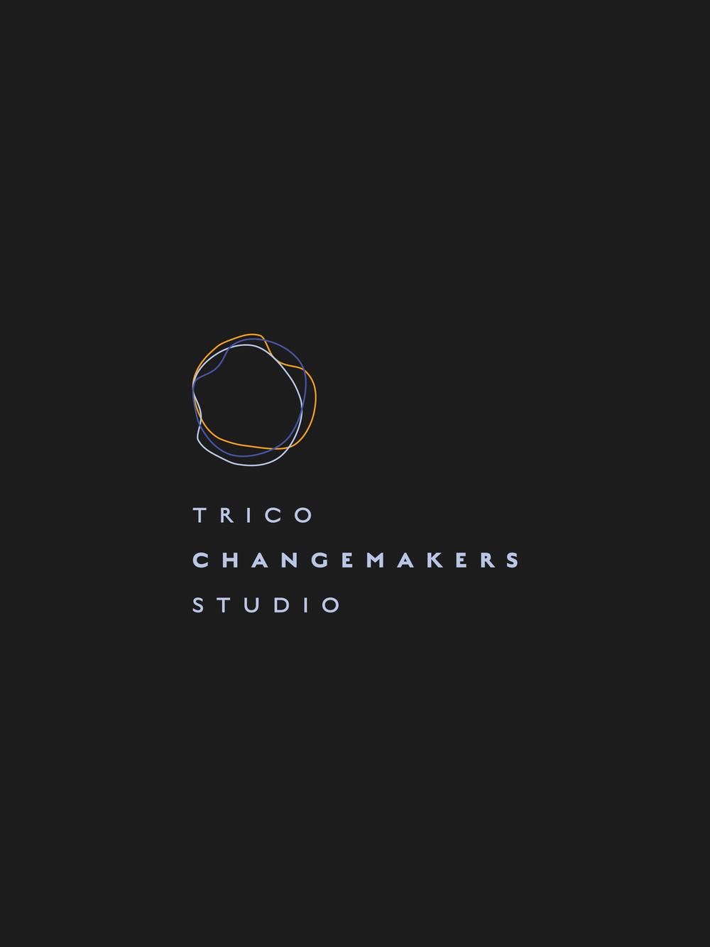 Changemakers Studio Logo   Trout + Taylor www.troutandtaylor.com